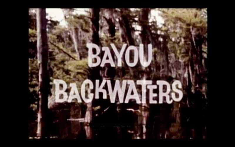 Bayou Backwaters