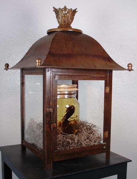 Cookoo's Nest