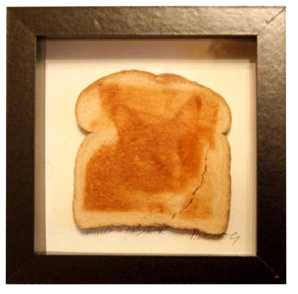 Cat on Toast