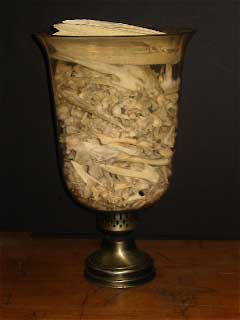 Elizabeth Shannon, Victorian Style Urn with Alligator Bones