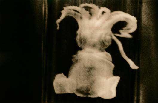 Maud Larsson, Strange Birth
